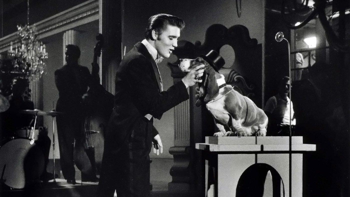Elvis Presley Sings Hound Dog